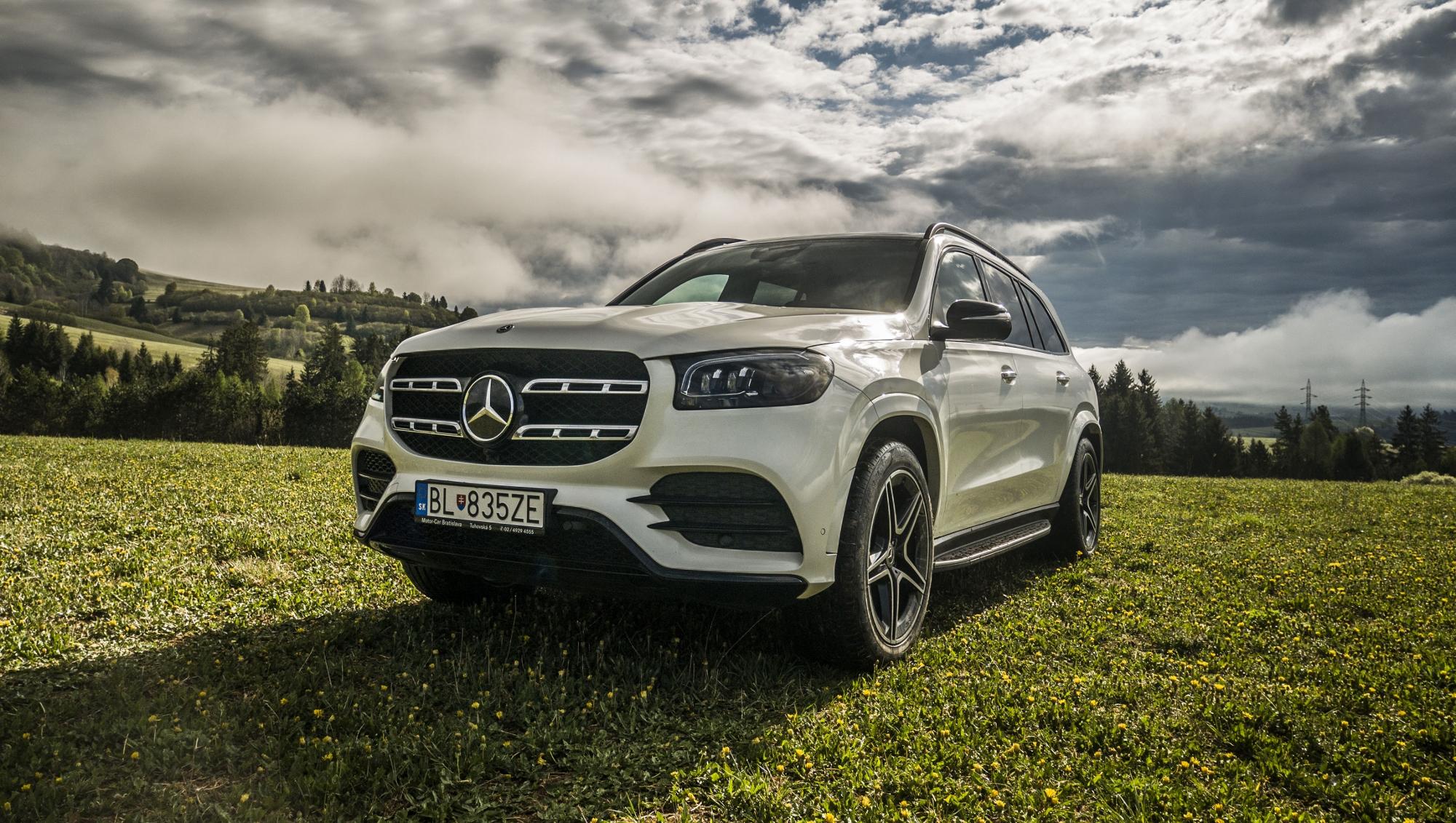 Mercedes GLS (31)
