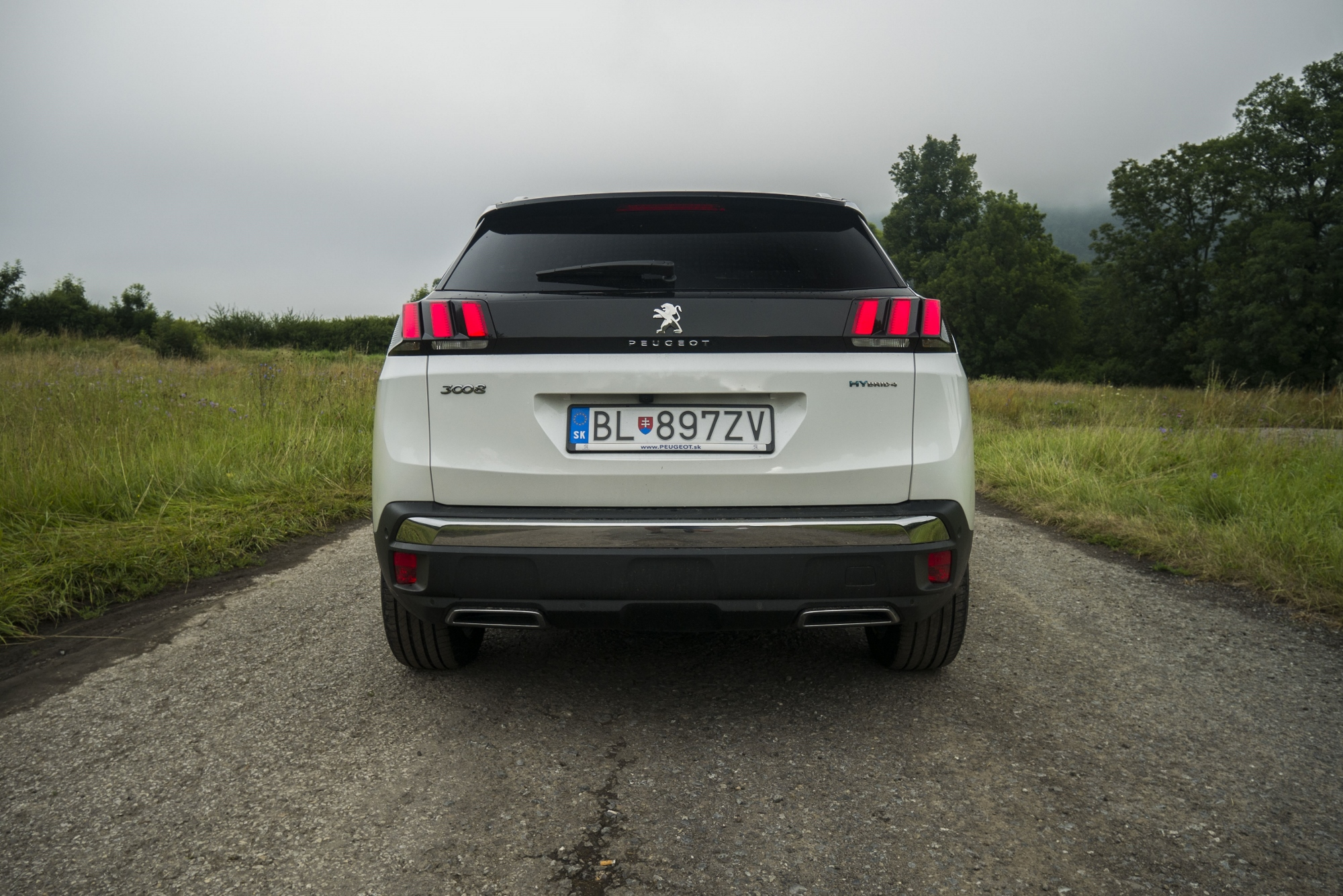 Peugeot 3008 Hybrid4 (12)