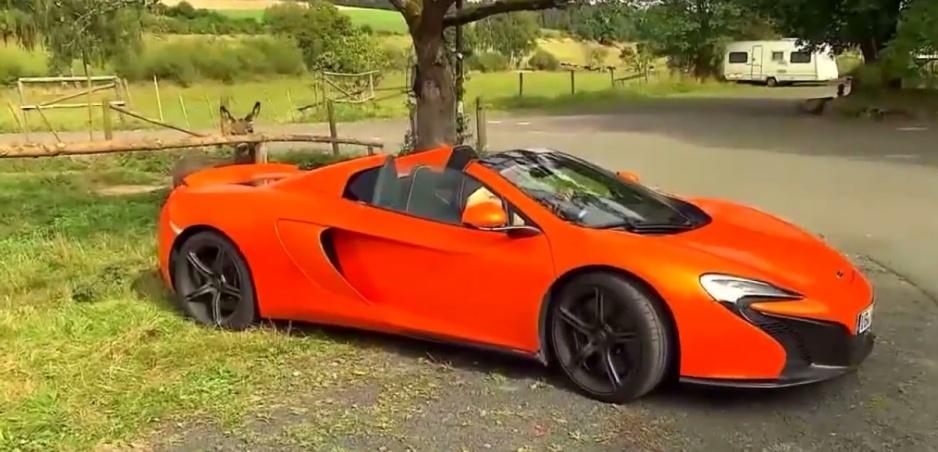 Somár Vitus zahryzol do oranžového McLarenu za 300-tisíc eur, pomýlil si ho s mrkvou