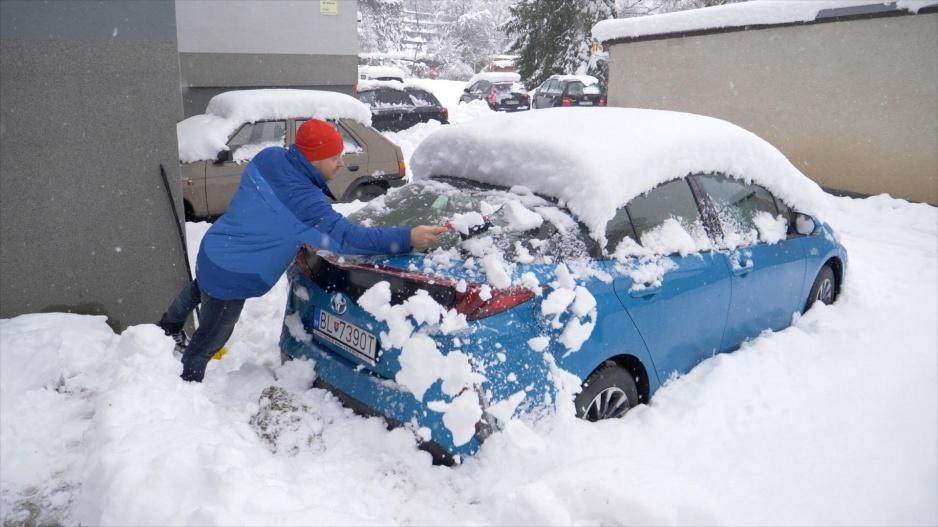 Sneh rasťo Prius
