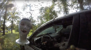 Toto ste ešte nevideli: Osy ovládli opustené auto.  Zábery sú hororové