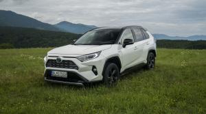 Toyota RAV4 (6)