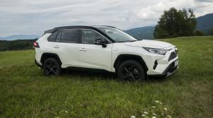 Toyota RAV4 (20)